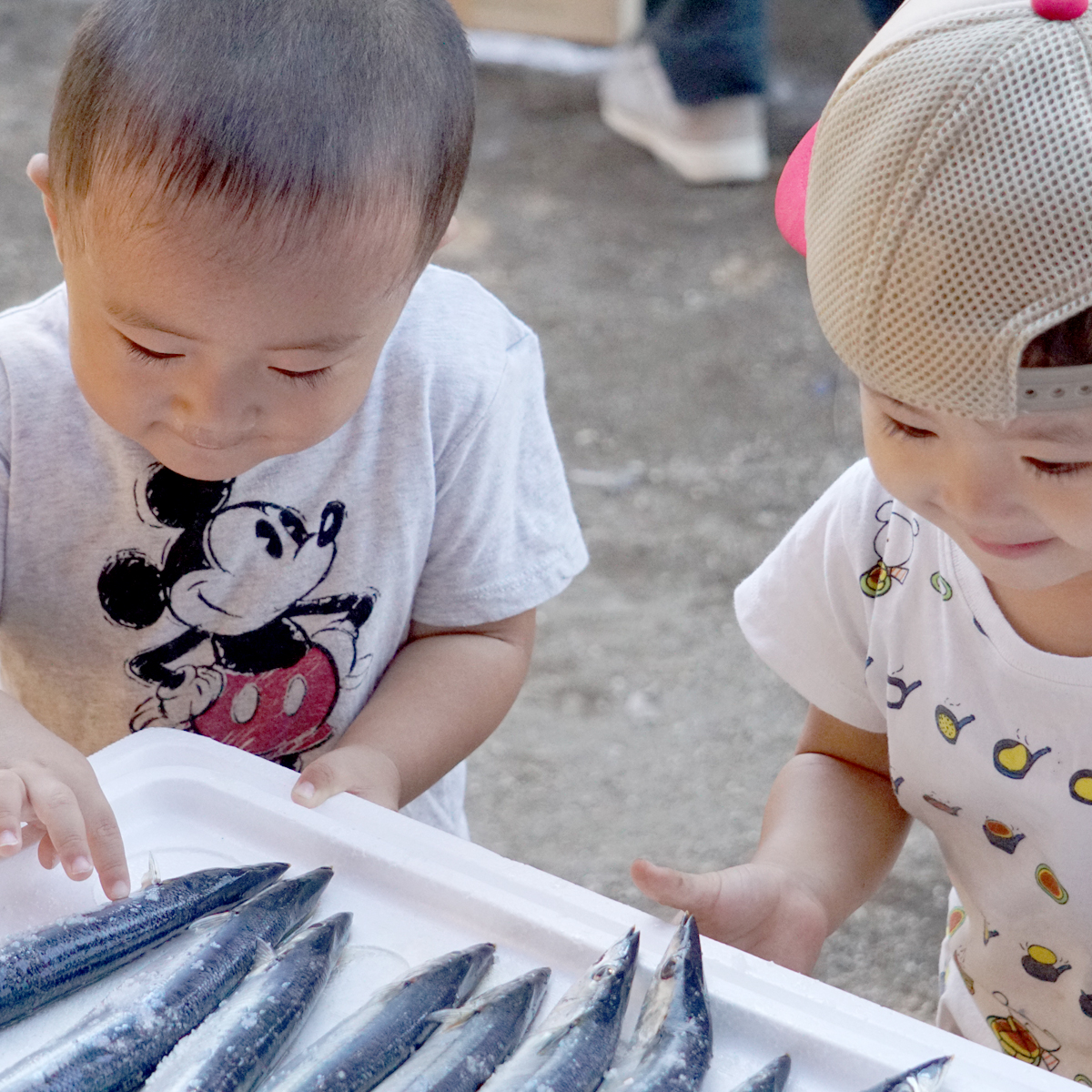 所沢市のあかね保育園のサンマ焼きバーティーの子どもとサンマの画像