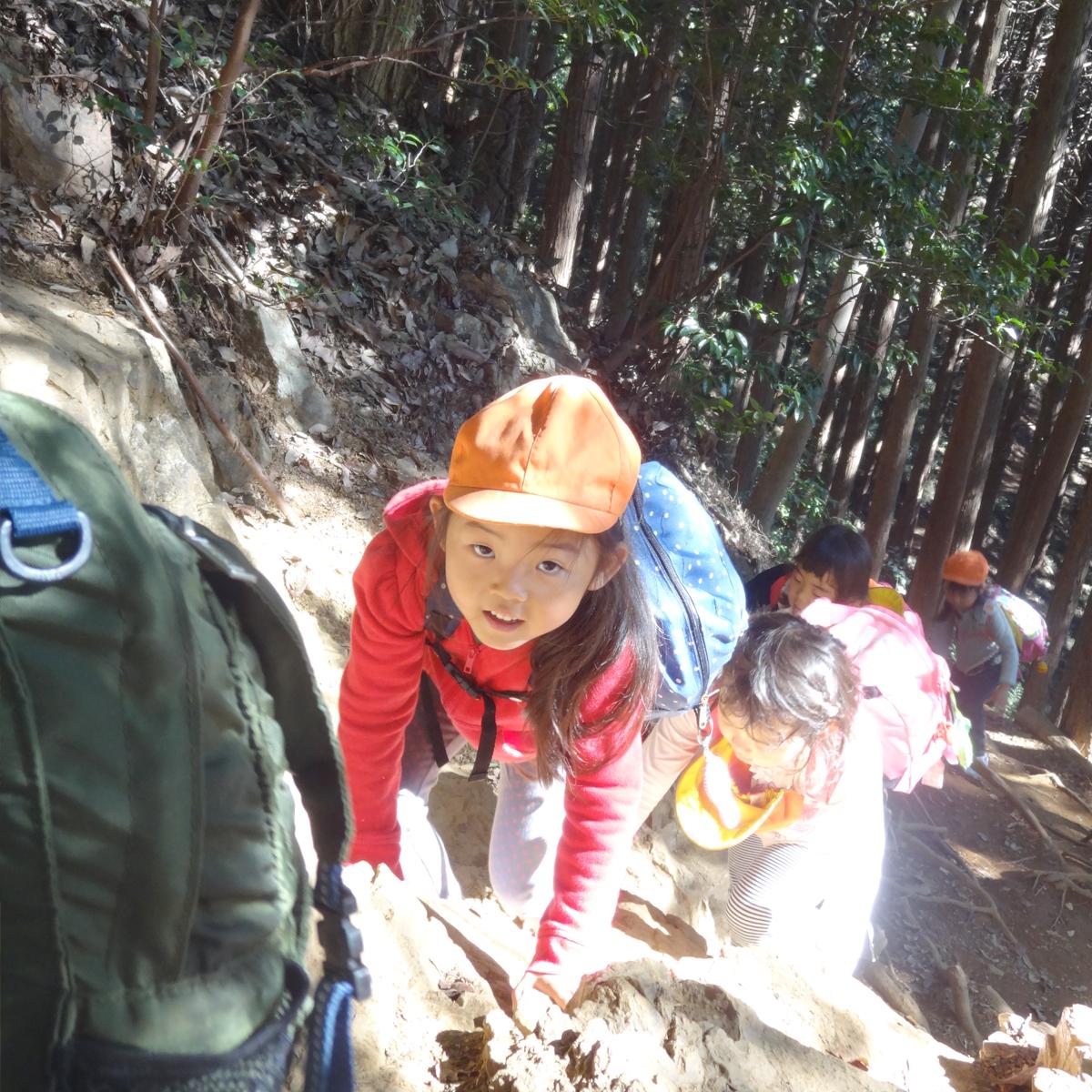 あかね保育園の年間のイベントと行事の山登り遠足の画像