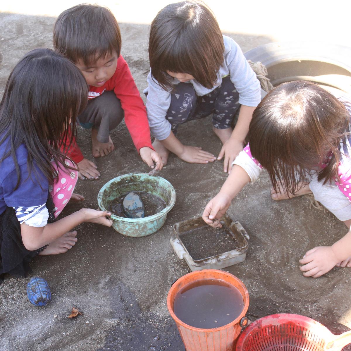 所沢市のあかね保育園の午前の遊びの泥んこ遊びの画像